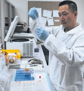 Photo by Phil A. Jones Spc. Joon Cho, Landstuhl Regional Medical Center laboratory technician, processes blood samples that will be placed in a centrifuge to separate the blood cells and platelets before being tested for different antigens.