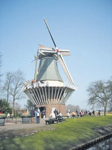 A perfect place to take photos of the bulb fields is the Keukenhof windmill.
