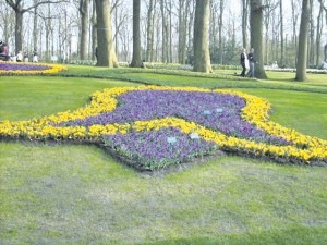 Keukenhof gardeners are experts at planting bulbs in specific designs.