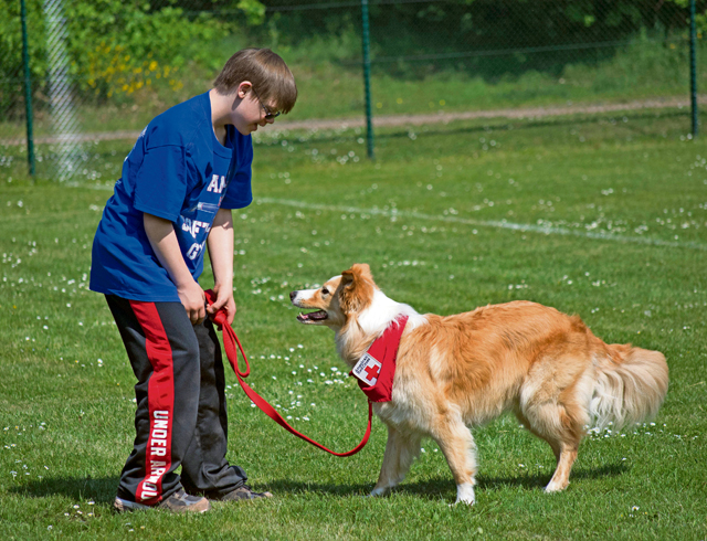 James Lucas plays with a Red Cross volunteer dog at the Ramstein High School softball field.