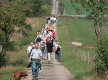 Courtesy photo Participants of the culinary hike in Rodenbach get to admire the scenic countryside Saturday and Sunday.