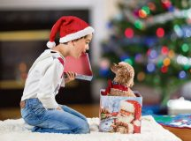 Photo by Romiana Lee /Shutterstock.com Puppies should not be found under the Christmas tree unless the buyer has followed some tips as to how to make the right choice.