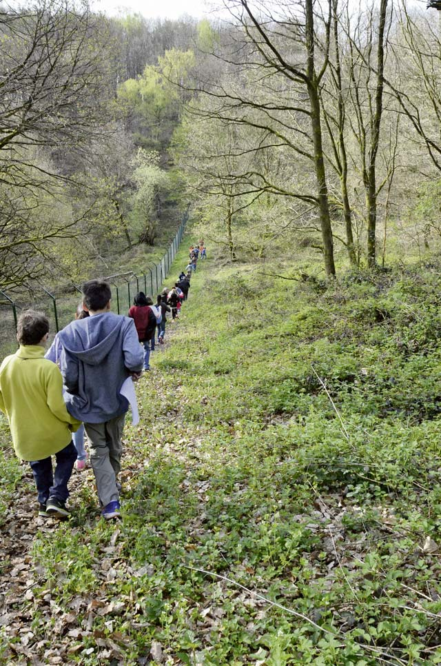 Garrison environmental office, students hike Sembach nature trail