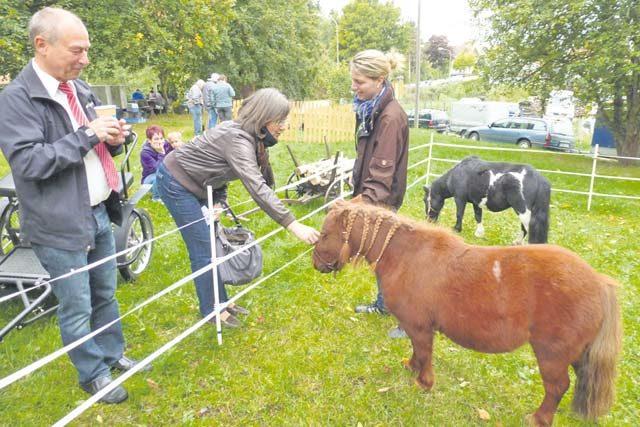 Farmers market takes place in Schneckenhausen