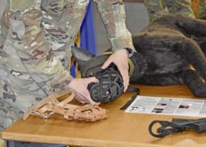 Army Veterinarians help Air Force ensure safe MEDEVAC of military working dogs