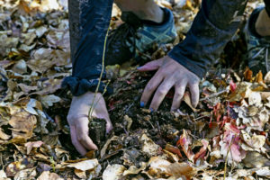 Earth Day: Ramstein sows seeds