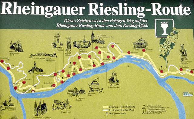 Along the Rheingau Riesling Route
