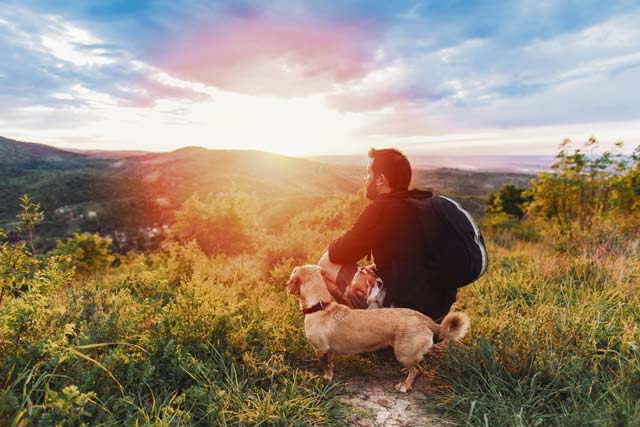 Dog-friendly hiking in the KMC