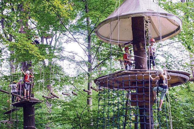 """Kletterwald """"climbing forest"""" Neroberg"""
